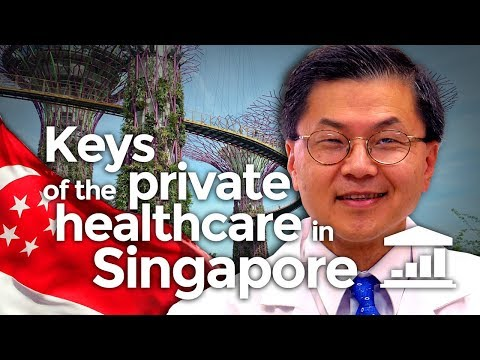 The Keys to Private HEALTHCARE in SINGAPORE - VisualPolitik EN