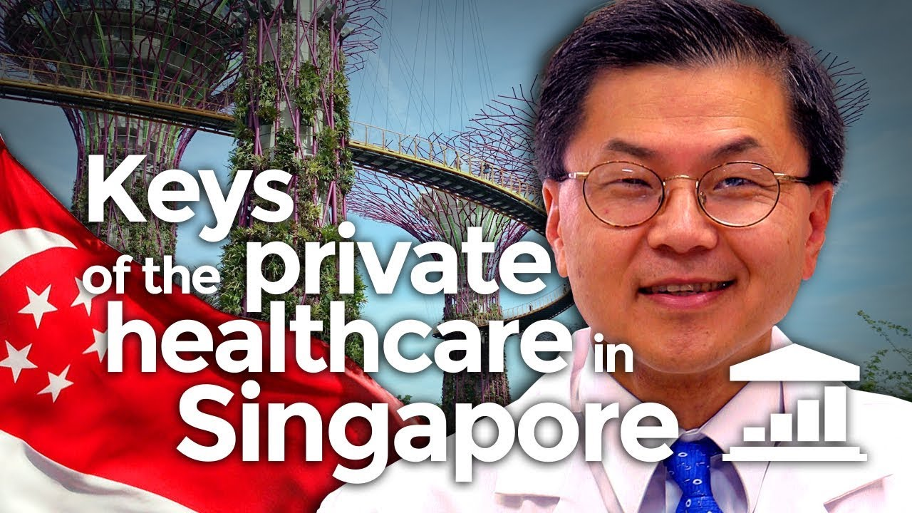 the-keys-to-private-healthcare-in-singapore-visualpolitik-en