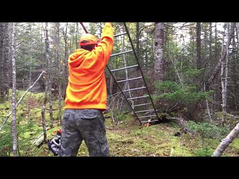 How to setup a deer stand by yourself - Nova Scotia