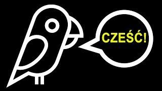 Co sprawia, że papugi potrafią mówić