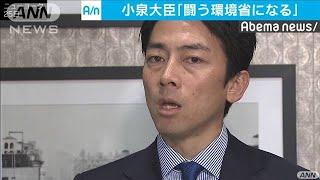 小泉大臣「闘う環境省になる」 初の外遊で成果は・・・(19/09/26)