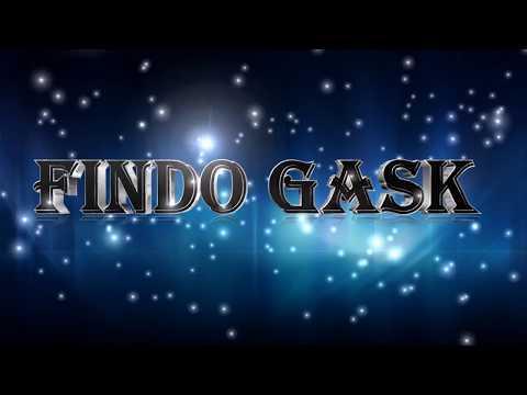 Findo Gask - DR. Phinn's Elixor - Vinyl 1975