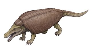 Paleo Profile - Armadillosuchus
