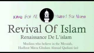 What is meant by the statement - Islam has no church ?
