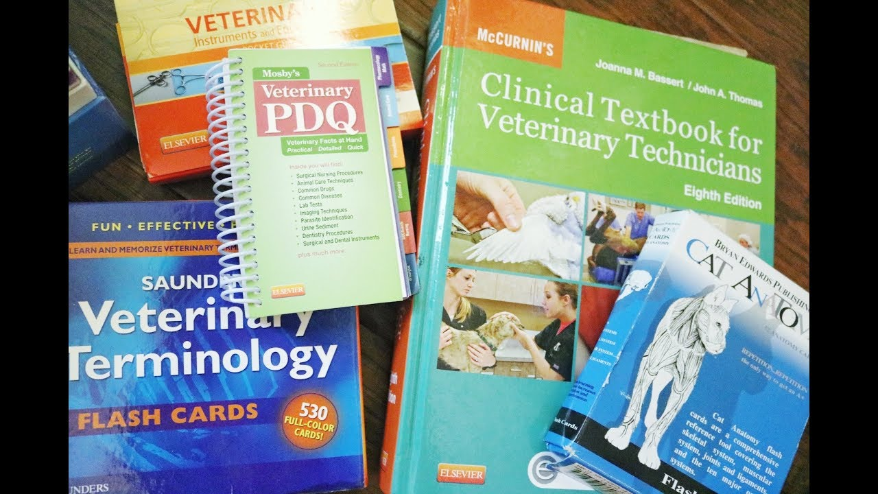 Basic Textbooks & Study Materials | Veterinary Medicine - YouTube