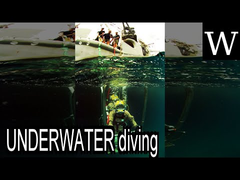 UNDERWATER diving - WikiVidi Documentary