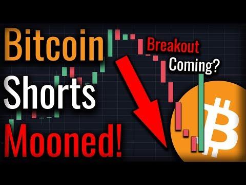 bitcoin shorts