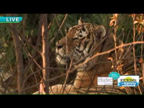 What`s new at Cleveland MetroParks  Zoo?