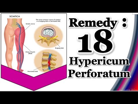 Hypericum Perforatum Homeopathic Medicine. Remedy 18. (Requested Video)