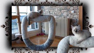 DIY ? Dounat Schaukel für Katzen | knit Swing for Cats