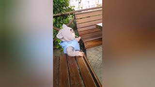 Baby's Free- Funny Kids Video By Kero