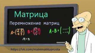 Матрица. Перемножение матриц. (Матричный шварц 4) матрицы математика
