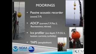 Strait Science : Chukchi Sea Life - Part 1