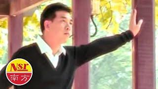 秦咏Qin Yong - 浓情恋歌金曲1【落叶】