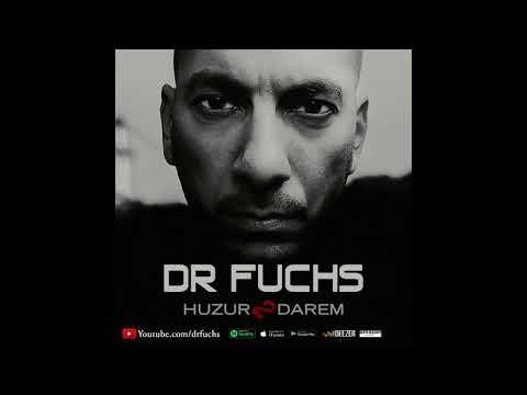 3 Dr Fuchs No Problem ( 2017 )