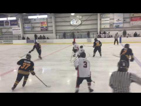 Houston Hawks vs. Bartlett Bears (Full Game) 11/19/16