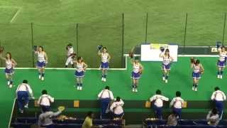 2014年7月24日東京ドームで行われた第85回都市対抗野球大会3回戦、西濃運輸(大垣市)vs 三菱重工神戸(神戸市)戦での西濃運輸の応援シーン。