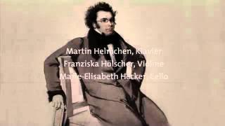 F. Schubert Notturno Es-Dur D 897.mp4