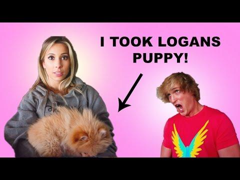 I STOLE LOGANS PUPPY!!!