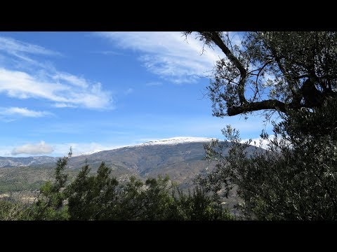 Lecrin Valley. Ref.: 0106. Eco built cortijo with organic land perfect for permaculture.