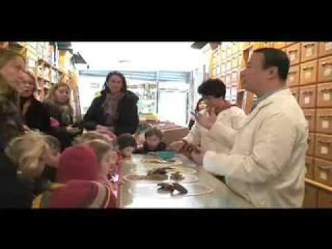 Explore Chinatown: Lin Sister Herbs