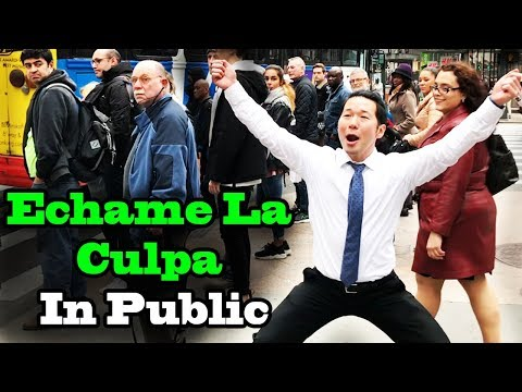 Luis Fonsi, Demi Lovato  Échame La Culpa  SINGING IN PUBLIC!!