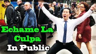 "Luis Fonsi, Demi Lovato - ""Échame La Culpa"" - SINGING IN PUBLIC!!"