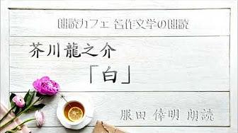 芥川 龍之介 白 青空 文庫