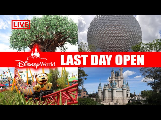 LIVE: Walt Disney World Is Closing - Inside Look At The Parks - Disney Live Stream