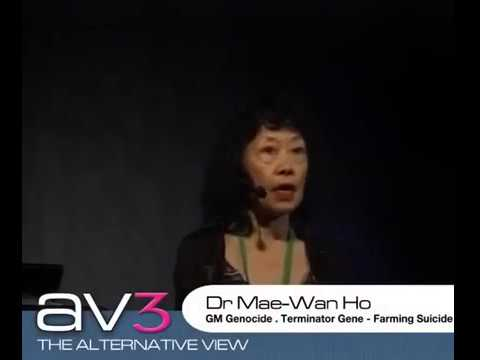 Mae-Wan Ho - GM Genocide, Terminator Genes and Farmer Suicides – AV3