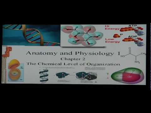 Anatomy and Physiology Help: Chapter 2 Anatomy I Basic Chemistry and Biochemistry Review