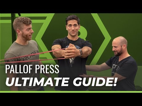 Pallof Press Exercise Guide — Tutorial, Benefits, Variations