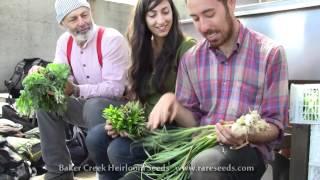 Brooklyn Grange Farm NYC  Part 2