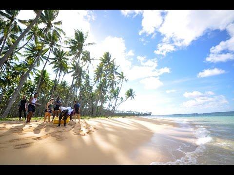 Wildcrafted Fiji with Island Spirit