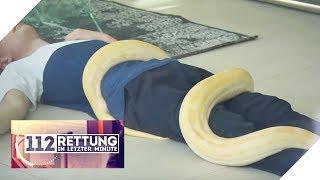 xxl-wrgeschlange-warum-ist-der-junge-bewusstlos-112-rettung-in-letzter-minute-sat-1-tv