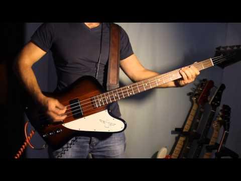 Kings Of Leon - The Immortals (Gibson Thunderbird)