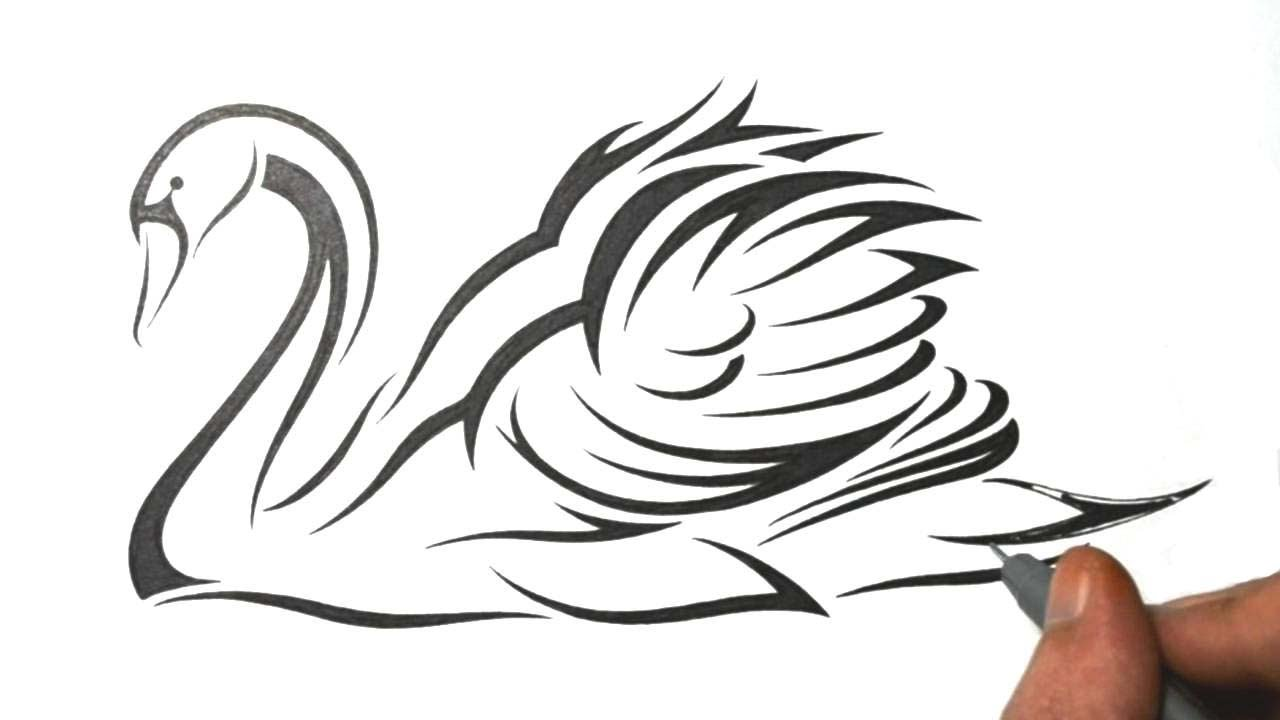 how to draw a swan tribal tattoo design style youtube
