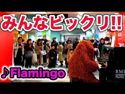 【音楽家ムック】街中で突然、米津玄師のFlamingo弾いてみた【ピアノ】【ドッキリ】Japanese character MUKKU is piano prank!!!!