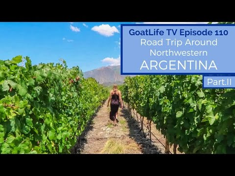Road Trip Around Northwestern Argentina (Part 2) - Wine in Cafayate