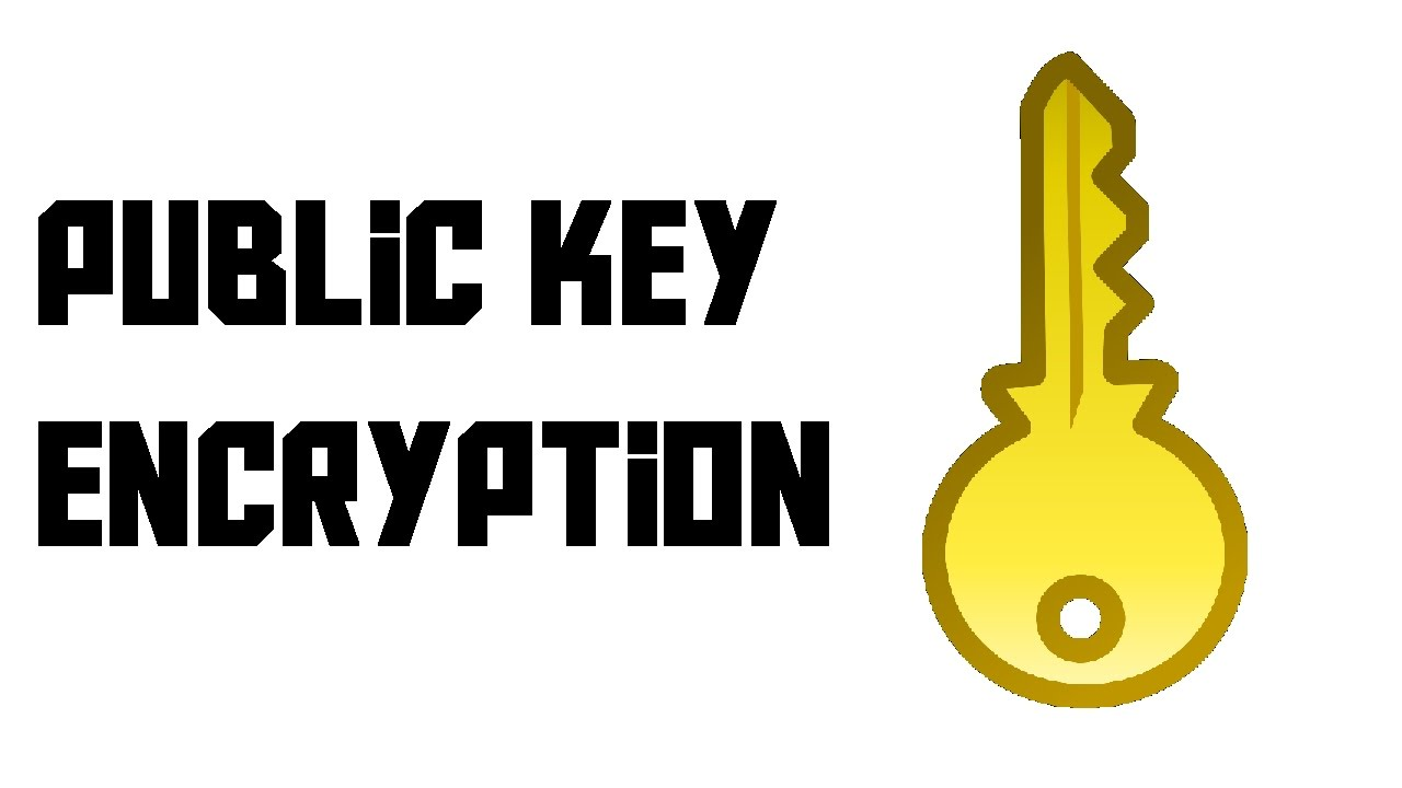a look at public key encryption as the process of disguising information Public key cryptography, and we look forward to a beta encryption, the application of cryptography, is the process of disguising a message so.