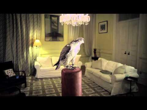 Minta & The Brook Trout - Falcon mp3 baixar