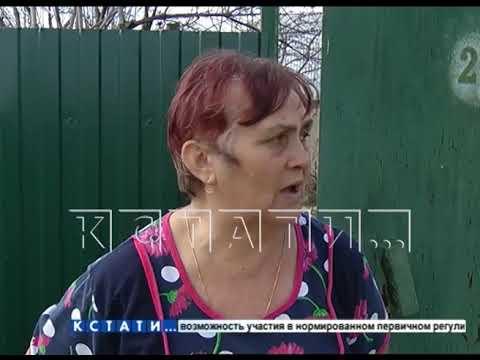 В Володарском районе открытие шашлычного сезона закончилось гибелью людей