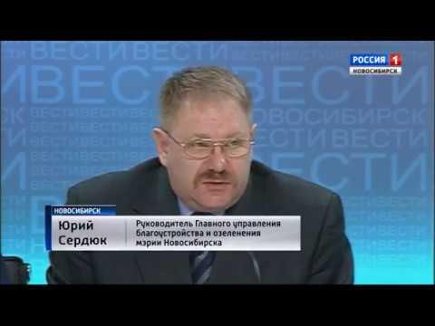 Александр куршев вести новосибирск фото