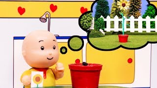 Caillou and the Sunflower | Caillou Cartoon