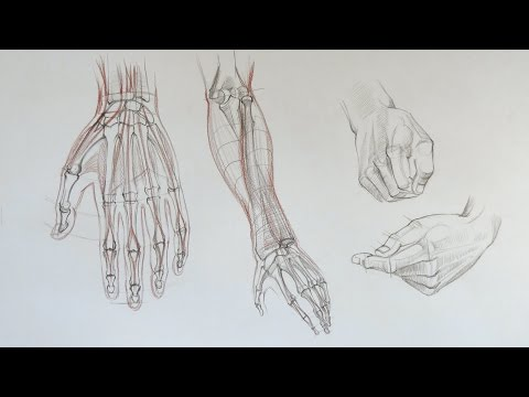 How to Draw Hands - Anatomy Master Class for figurative artists