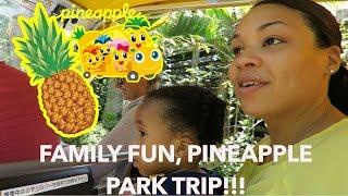 FAMILY FUN PINEAPPLE PARK TRIP!