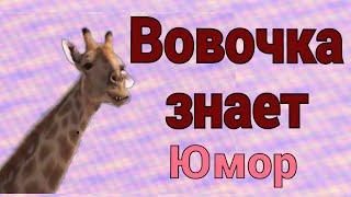 Вовочка и Жирафа в анекдотах с DJ DED21 anibtiko от 20 апреля 2021 или кто его раздевает
