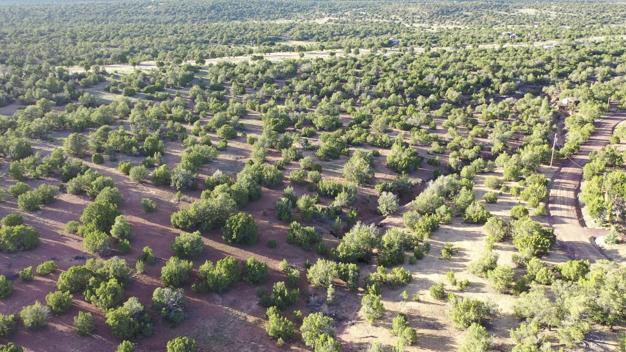 Sold by Compass Land USA - Apache County, Arizona - Parcel 107-12-591