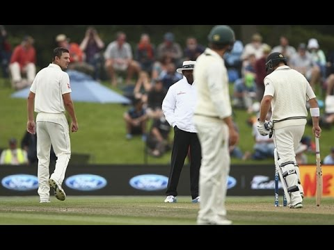Hazlewood says _Who the F*ck is 3rd Umpire