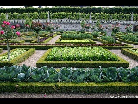 Cмотреть видео Красивый огород 2